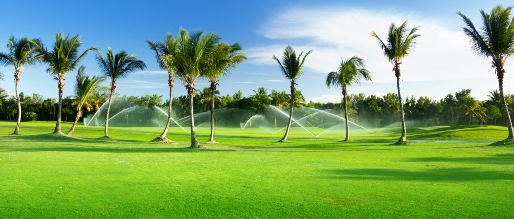 drought golf course irrigation
